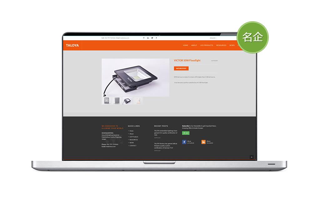 塔罗亚LED品牌网站设计
