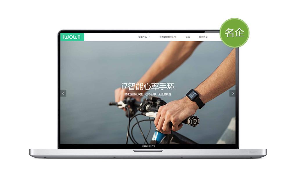 埃微科技品牌网站设计