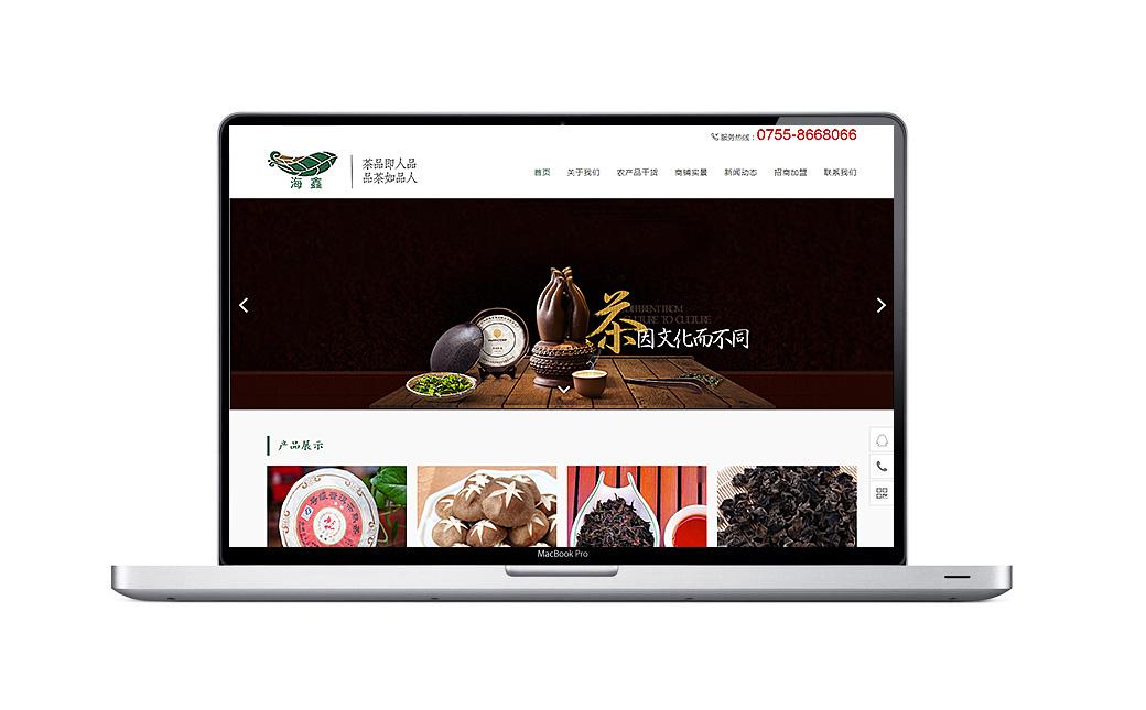 海鑫品牌网站设计