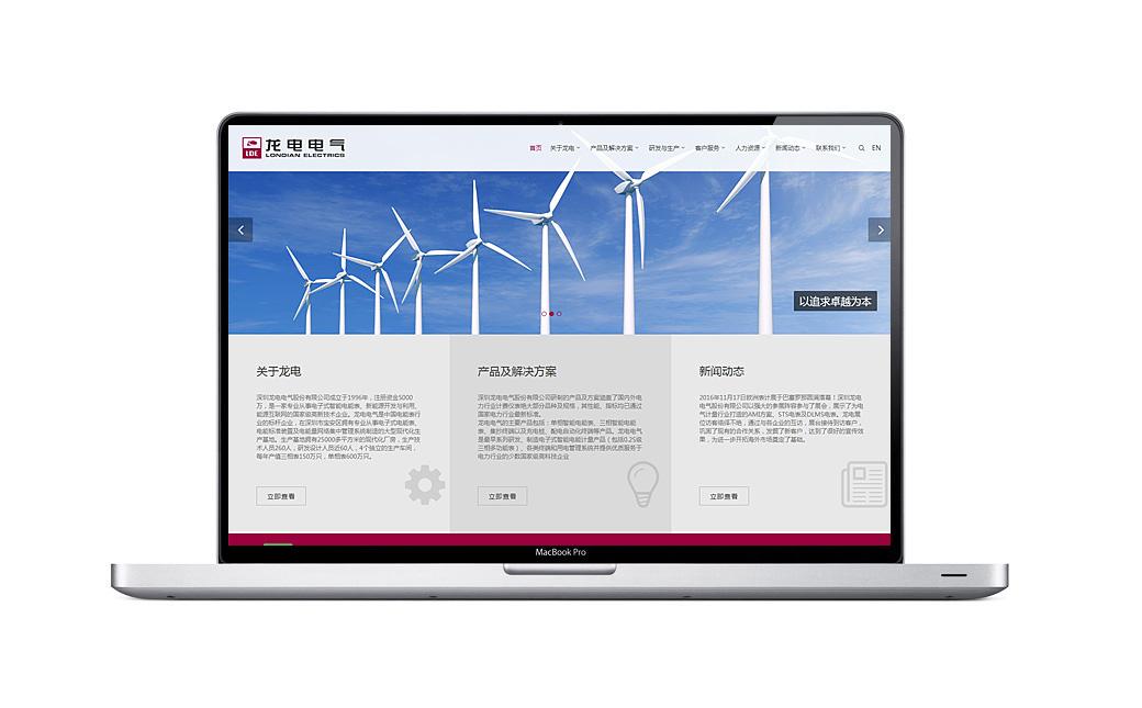 龙电电气网站品牌设计